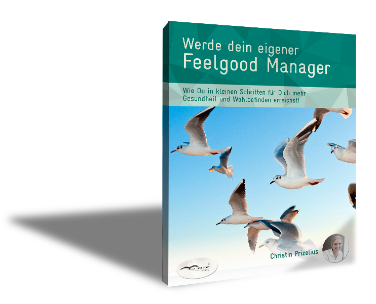 Christin Prizelius, Feel Good Management, Online Institut, Meer, Positive Psychologie