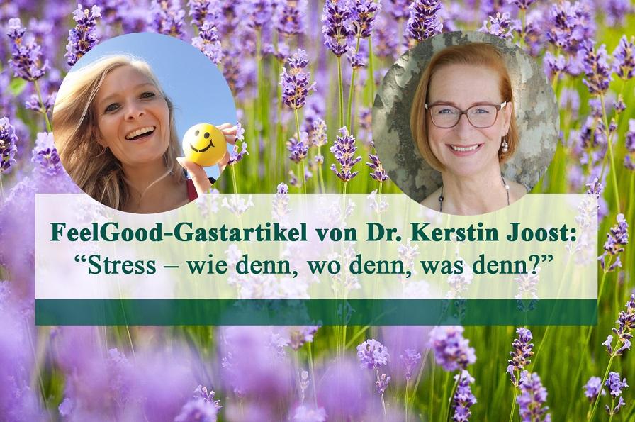 Dr. Kerstin Joost, Christin Prizelius, Feel Good Management