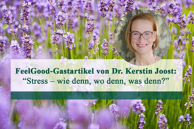 """Gastartikel von Dr. Kerstin Joost: """"Stress – wie denn, wo denn, was denn?"""""""